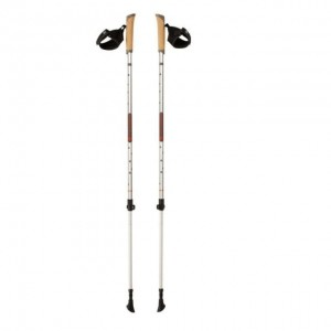 Kije Nordic Walking FERRINO Step-in
